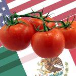 EE UU Llega A Un Acuerdo Con México Para Levantar Los Aranceles Sobre El Tomate