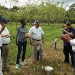 """FAO promueve en RD ganadería climáticamente """"inteligente"""""""