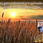 La Agricultura jugará un papel fundamental en la reactivación de la economía. Programa #25 2020
