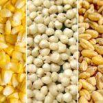 Argentina registra un 25% menos de explotaciones agropecuarias que en 2002