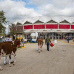 Confirman a la World Dairy Expo en Madison, del 28 de setiembre al 2 de octubre